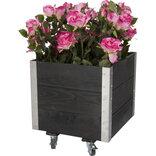 Blomsterkasse m/alu hjørner og hjul 40x40 cm