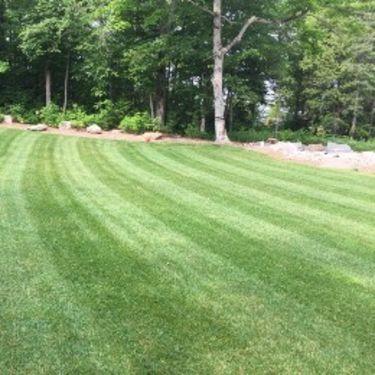 få en velplejet græsplæne
